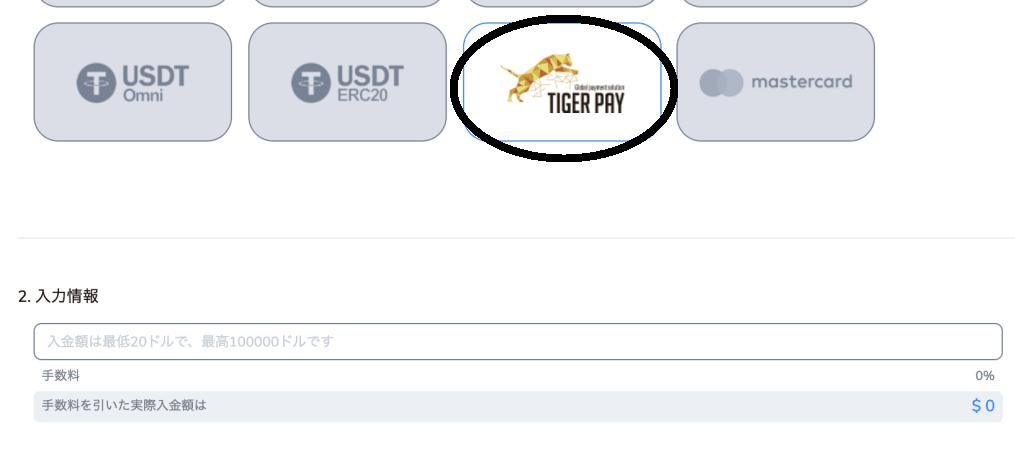 タイガーペイカジノ入金